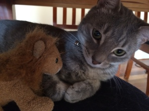 I has my lion.